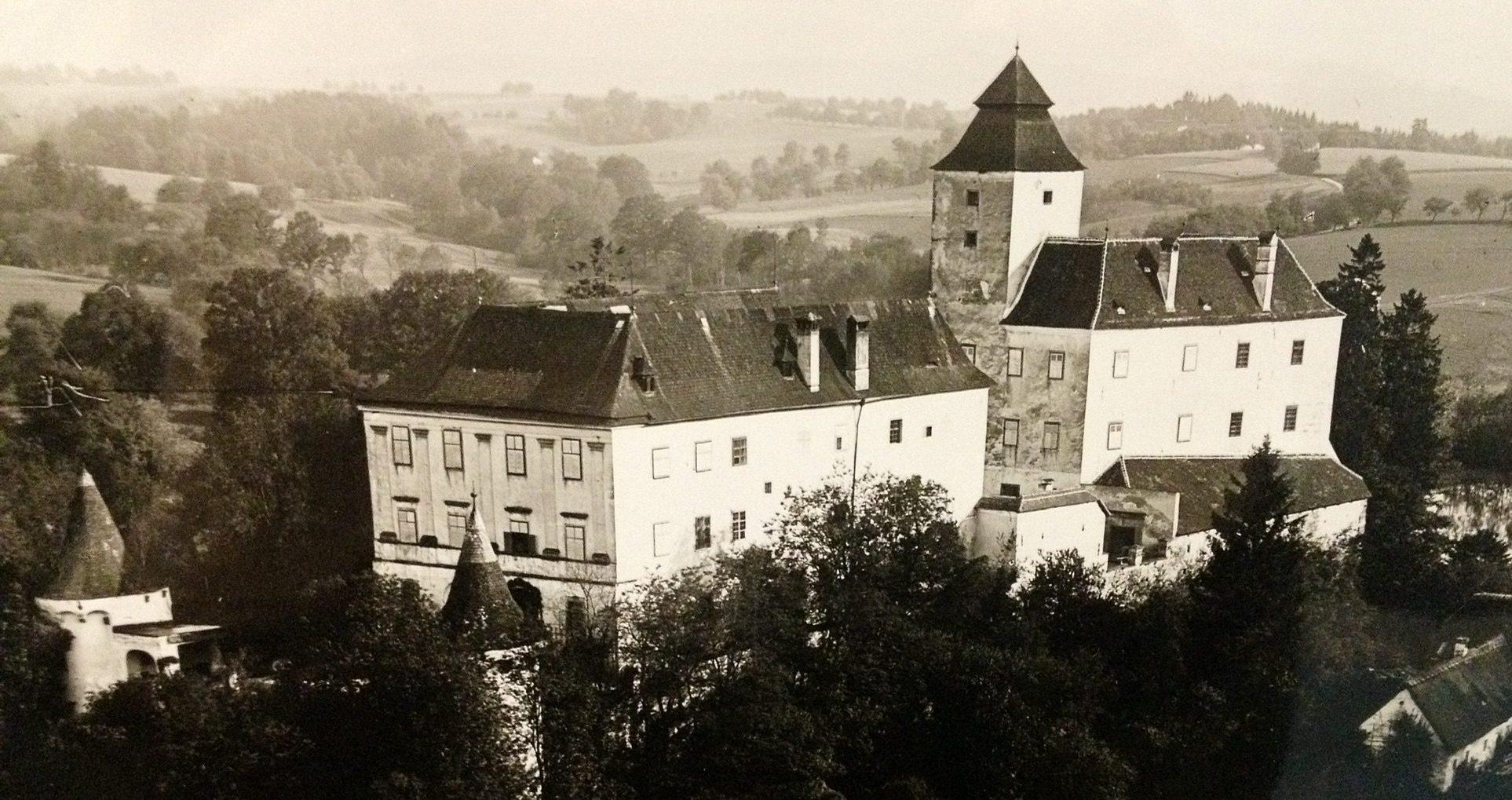 Schloss Seisenegg